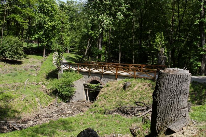 Wien-Hietzing_-_Naturschutzgebiet_1_-_Lainzer_Tiergarten_-_Brücke_über_den_Gütenbach_am_Hirschgstemm.jpg